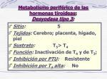 metabolismo perif rico de las hormonas tiroideas desyodasa tipo 3