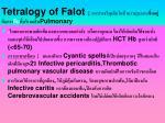 tetralogy of falot pulmonary