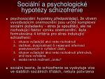 soci ln a psychologick hypot zy schizofrenie
