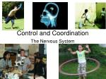control and coordination1