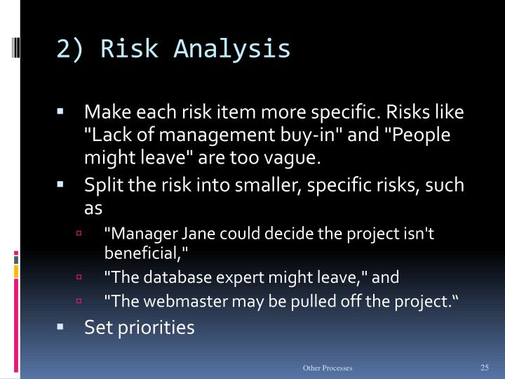 2) Risk Analysis