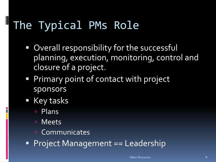 The Typical PMs Role