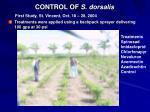 control of s dorsalis