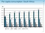 per capita consumption south africa