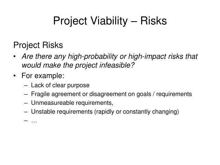 Project Viability – Risks