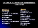 isquemia en la circulacion cerebral posterior