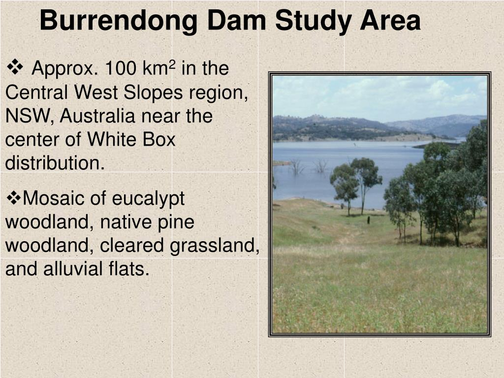 Burrendong Dam Study Area