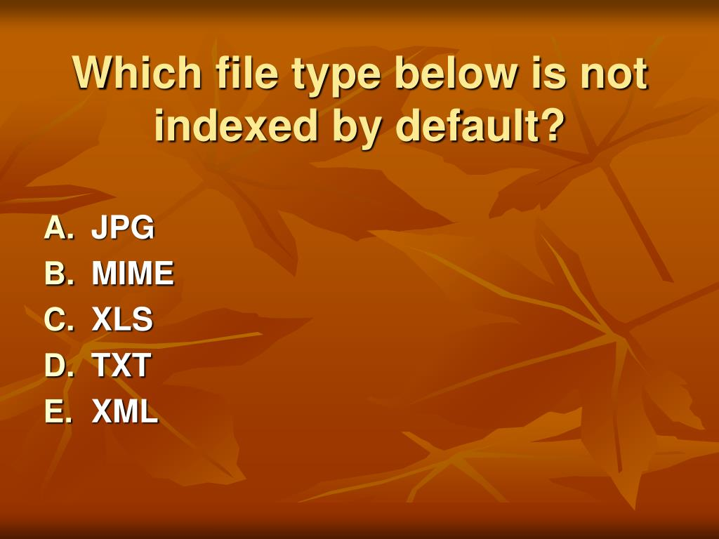 Which file type below is not indexed by default?