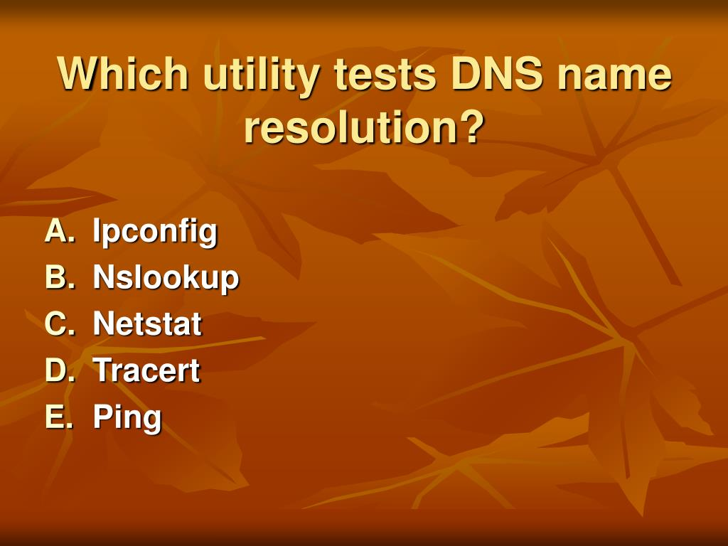Which utility tests DNS name resolution?