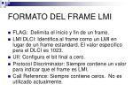 formato del frame lmi1