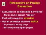 perspective on project evaluation