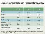ethnic representation in federal bureaucracy