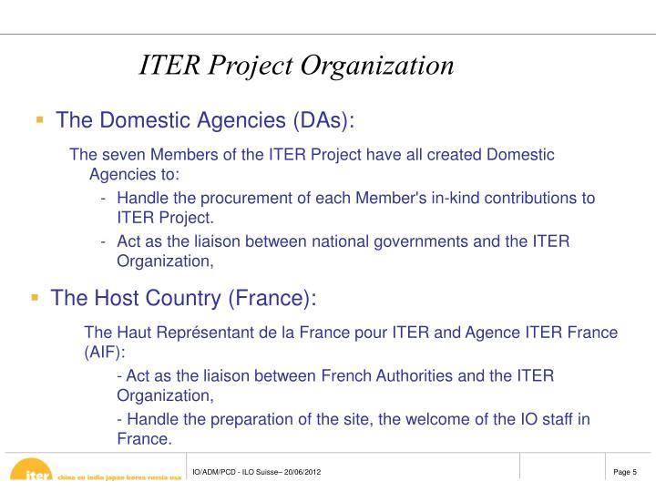 The Domestic Agencies (DAs):
