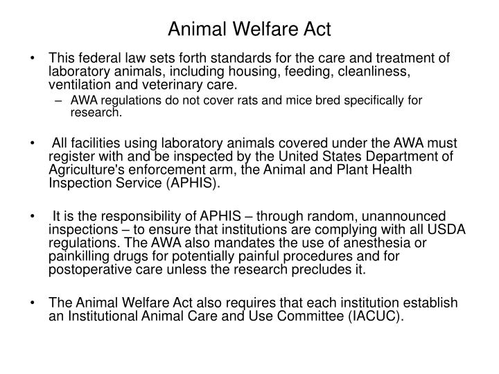 the federal animal welfare act Ars facilities are currently exempt from the animal welfare act and,  ask your  federal legislators to reintroduce the aware act to require the.