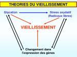 glycation stress oxydatif radicaux libres vieillissement changement dans l expression des g nes
