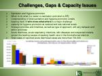 challenges gaps capacity issues
