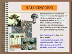 halucinogeni1