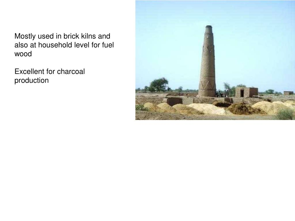 Mostly used in brick kilns and also at household level for fuel wood