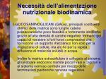 necessit dell alimentazione nutrizionale biodinamica5