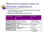 efectos de la insulina sobre los diferentes metabolismos
