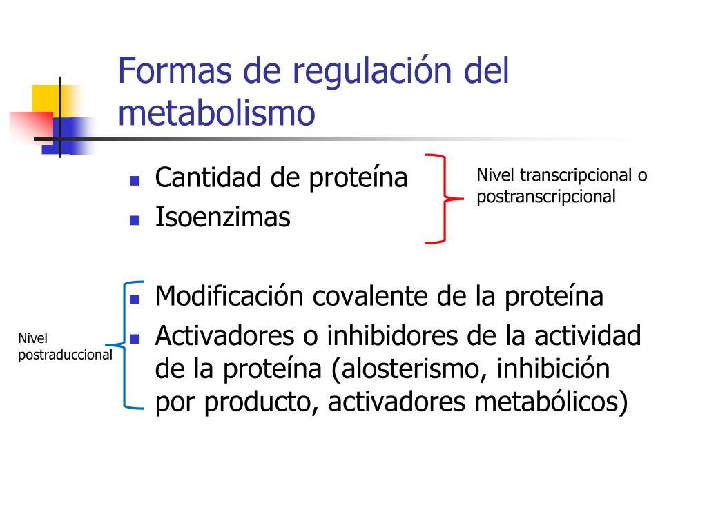 Y como acelerar el metabolismo para adelgazar