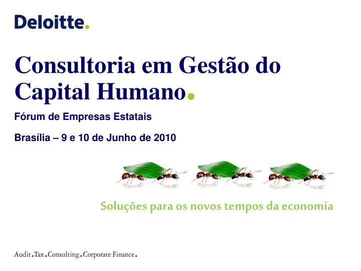 consultoria em gest o do capital humano n.