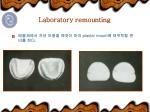 laboratory remounting