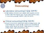remounting3