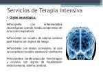 servicios de terapia intensiva3
