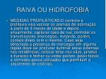 raiva ou hidrofobia2
