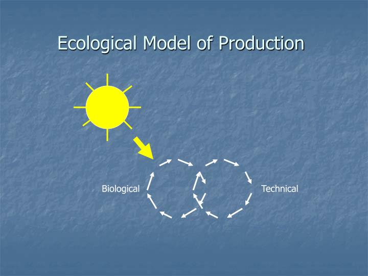 Ecological Model of Production