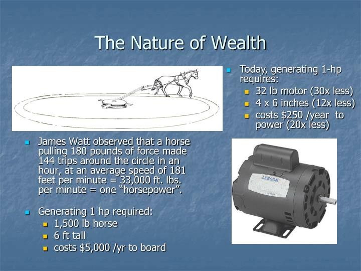 The Nature of Wealth