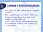 causas y epidemiologia4