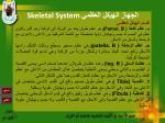 skeletal system25