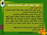skeletal system28
