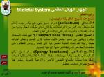 skeletal system6