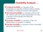 feasibility analysis1