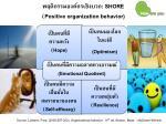 shore positive organization behavior
