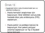 rnek 13