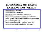 ectoscopia ou exame externo dos olhos
