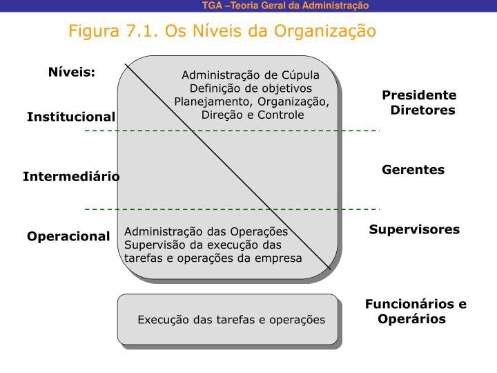 Figura 7.1. Os Níveis da Organização