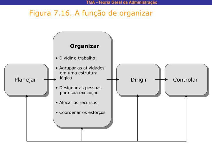 Figura 7.16. A função de organizar