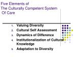 five elements of the culturally competent system of care