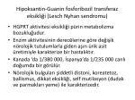 hipoksantin guanin fosforibozil transferaz eksikli i lesch nyhan sendromu