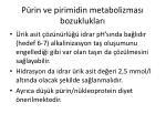 p rin ve pirimidin metabolizmas bozukluklar3