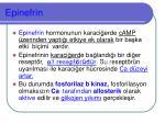 epinefrin