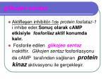 glikojen sentaz2