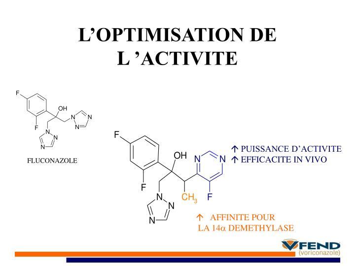 L'OPTIMISATION DE L'ACTIVITE