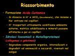 riassorbimento1
