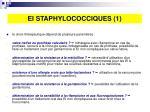 ei staphylococciques 1